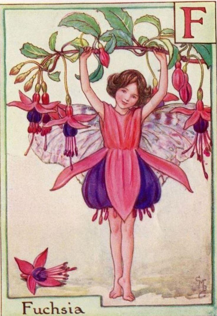 Snap Poppy Magic Butterfly Flower Fairy Art Print By Jasmine Photos