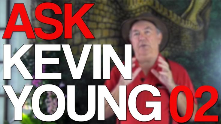The Chinese and Australian property market - Ask Kevin Young Episode 2