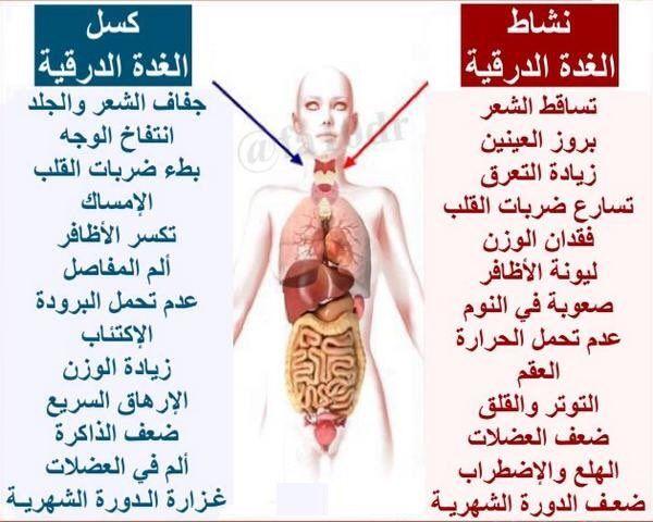 الغده الدرقية Health Fitness Health Medicine