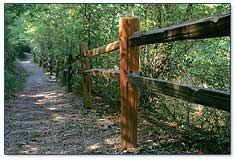 Nature Trail at Irondale Furnace Park in Mountain Brook