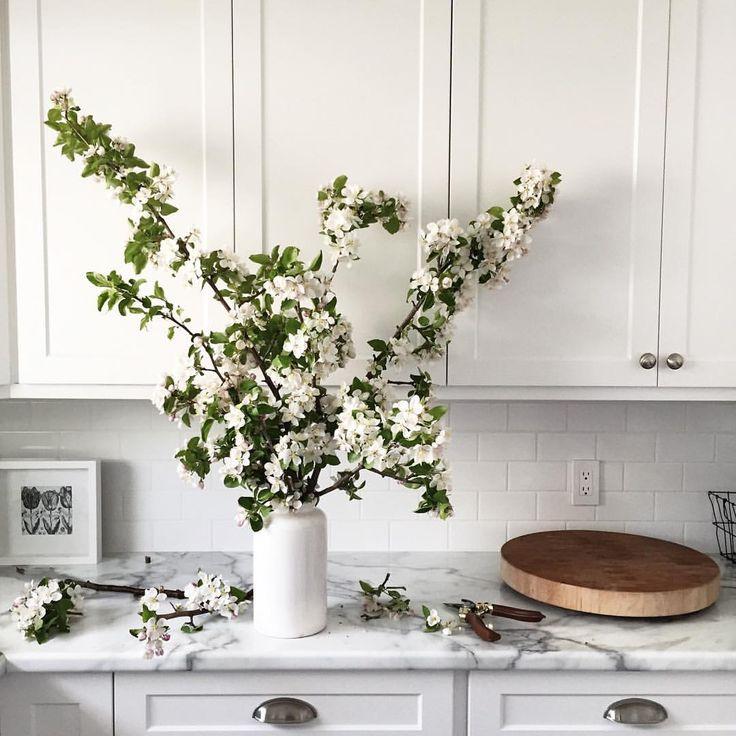 Mejores 382 imágenes de White flowers en Pinterest | Blanco, Cultivo ...