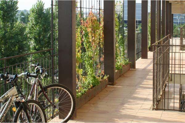 valla-con-barras-acero-corrugado-y-plantas-tapizantes