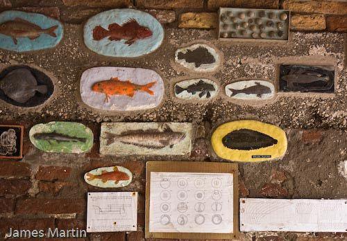 Chioggia Picture: Fish identification plaques near the port of Chioggia.