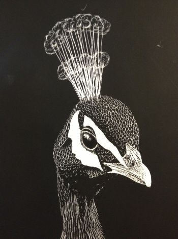Scratch Art Board HS Lesson Create Art with ME