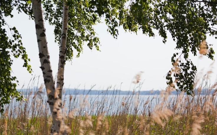 Vacker natur i Hägernäs Strand, Stockholm