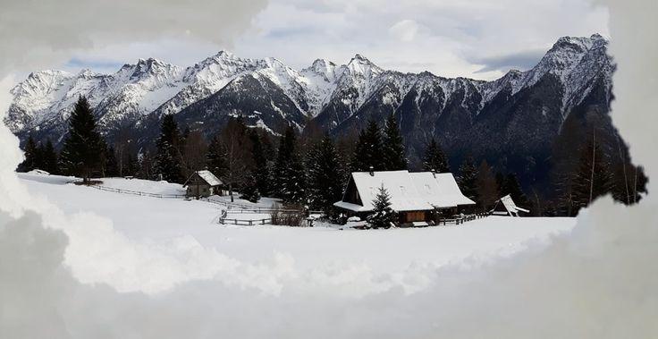 baite nella neve.jpg (1000×515)