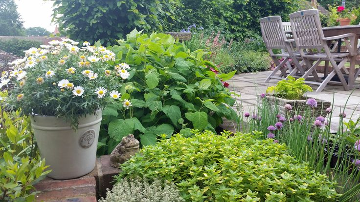 Contemporary, sloping garden design in Sunninghill, Berkshire by Linsey Evans Garden Design.  View of the secluded seating area and herb garden.    Several outdoor rooms, access to a small sloping woodland area, sinuous curving retaining walls.  http://www.linseysgardens.com