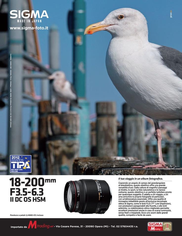 0223_SigmaLens_18-200_gabbianoC-DigitalCamera@1