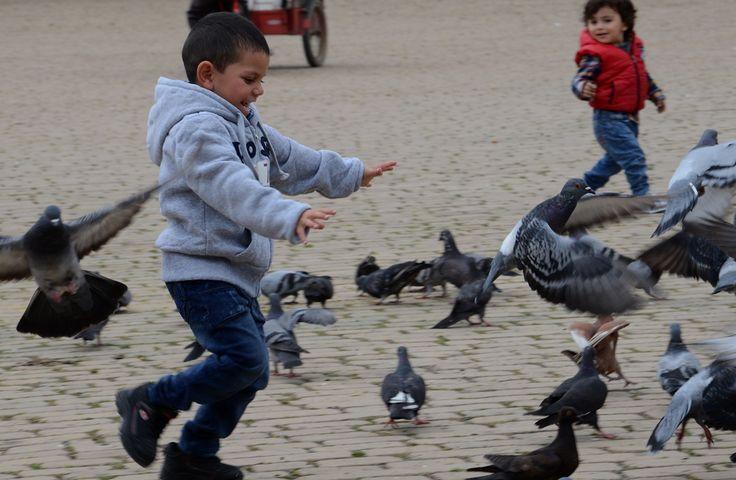Niños con las Palomas en la Plaza Principal de Zipaquirá Colombia Foto Angelito Baldrich