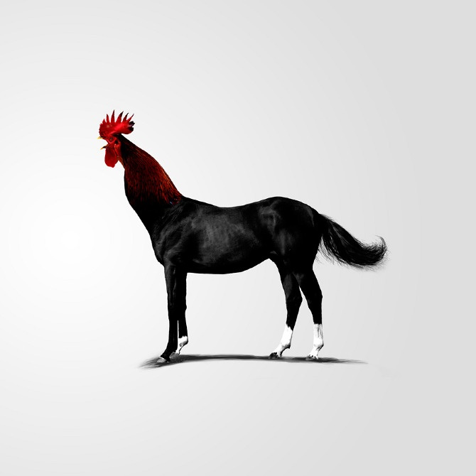 Rooster-horse