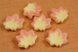 "fall wagashi ""もみじの干菓子(momizi no higashi)""  #japan #maple"