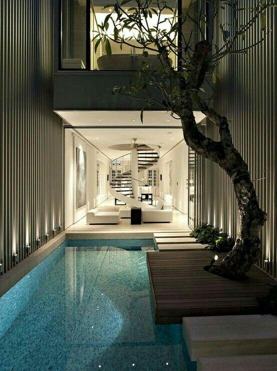 pool • tree • outdoor