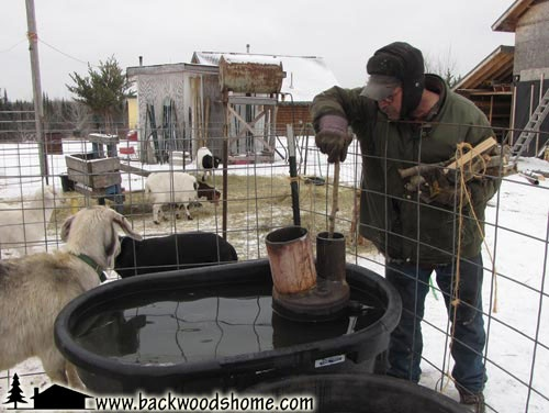 Build a wood-fired stock tank heater by Jackie Clay-Atkinson.  Tired of breaking the ice for your livestock each morning? Build this heater and save yourself the trouble! #JackieClay