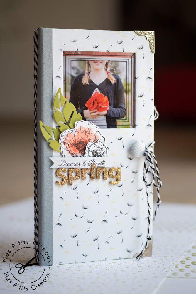 Mini album Spring, l'intégrale
