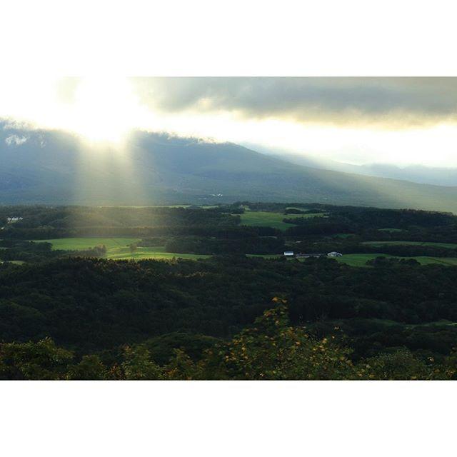 【tomoohiro.n】さんのInstagramをピンしています。 《太陽光線 #夕陽 #光の道 #森 #草原 #北軽井沢 #高原 #群馬 #eveningsun #ray #forest #plateau #grassland #autumn #gunma #japanlandscape》