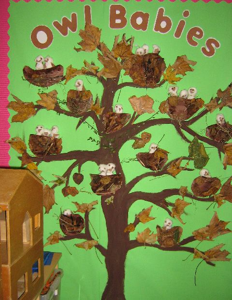 Owl Babies classroom display photo -