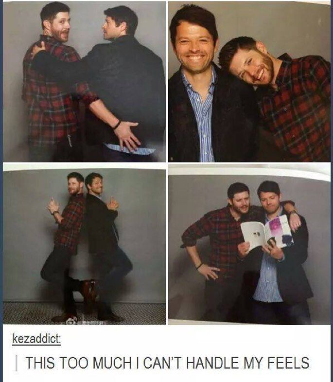 They are just too cute, no wonder there is a rumor they are gay for each other<<<< in an interview Misha said he was a little gay for jensen