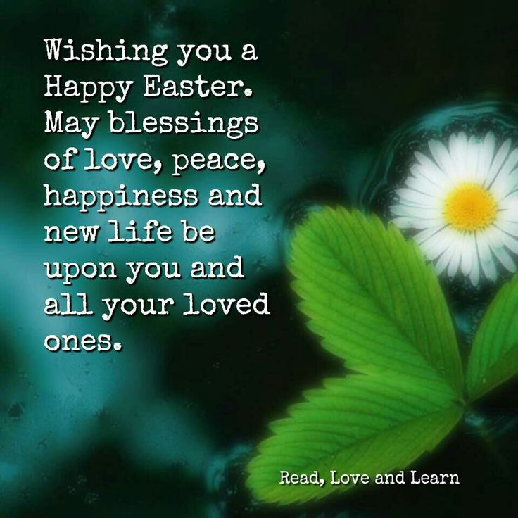Happy Easter Pictures With Quotes: Best 20+ Funny Easter Quotes Ideas On Pinterest