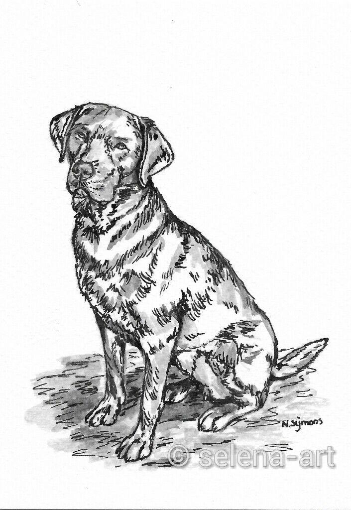 Labrador Ghillie ansichtkaart inkt www.selena-art.nl