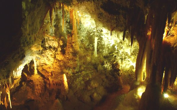 Helictites in one of the Caves at Jenolan. Get thtere on a Tour from Sydney