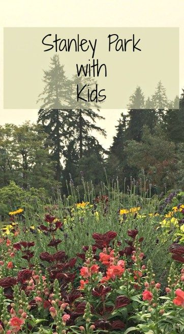 Stanley Park with Kids- Becoming a Traveling Family