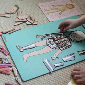 Bodymagnet game that teaches children the basics of anatomy. Comes in 8 different languages too.