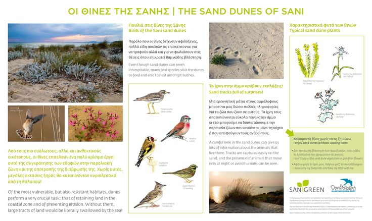 Sani Wetlands Signs, The sand dunes of Sani. Location: Halkidiki, Greece