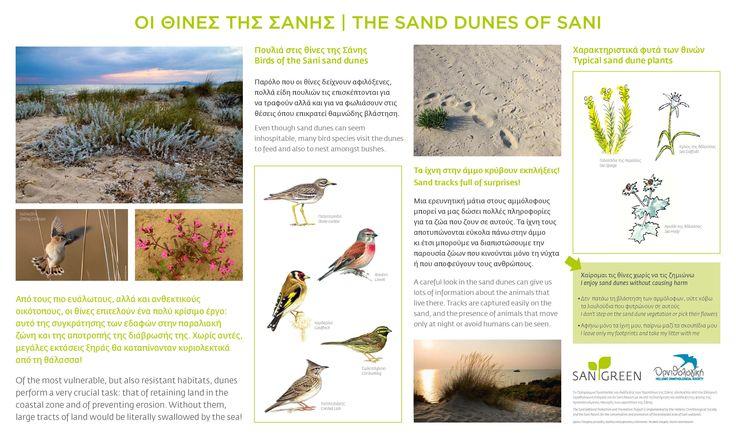Sani Wetlands Signs, The sand dunes of Sani. Location: Halkidiki, Greece
