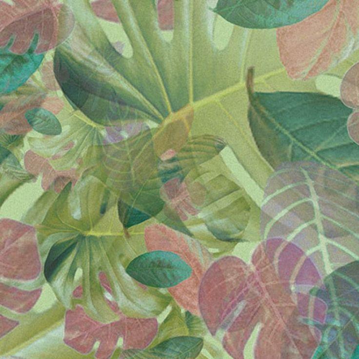 colourful plants - detail