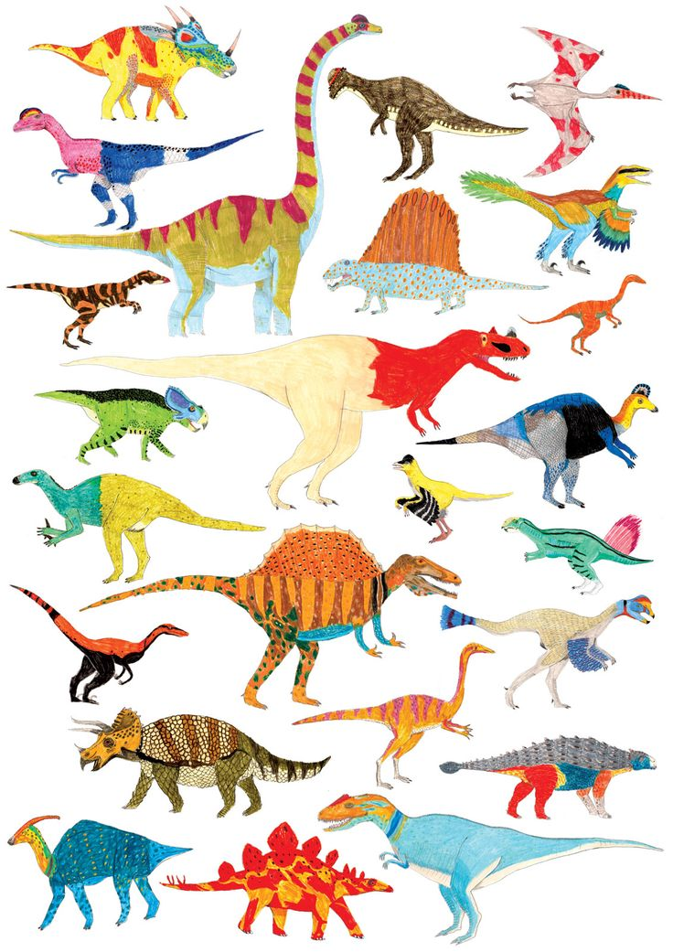 James Barker Illustration, Dinosaurs, Dinosaur Chart