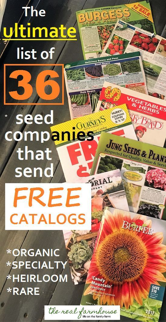 36 seed companies that send free catalogs right to your door. How to get tons of free catalogs. organic, specialty, heirloom, rare