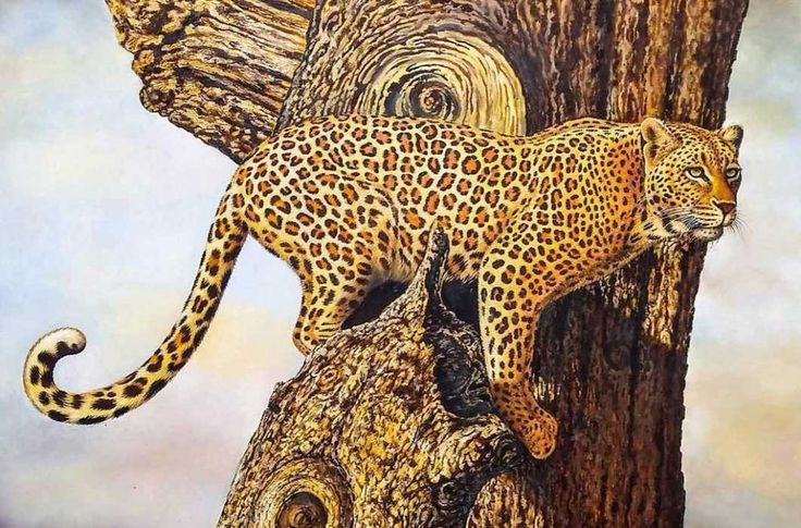 "Leopard oil Painting A leopard watching and waiting! Stealth personified - A master piece African Wildlife Series Painting Size: 115 x 90 cm | 45 x 35"" Media: Oil Painting on board    #art #arty #artist #artlovers #artsy #artoftheday #paintings  #fineart #fineartist #lion #Africanart #oilpainting #painting #oiloncanvas #illustration #drawing #instaartist #artgallery #masterpiece #instaart #beautiful  #wildlife #wildlifeplanet #wildlifephotography #wildanimals #bigfive #leopard"
