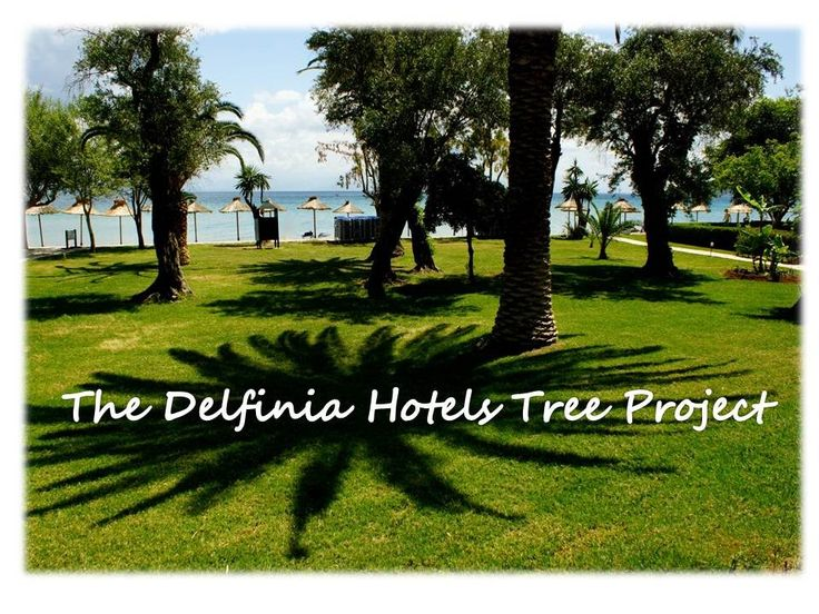 THE DELPHINIA HOTELS TREE PROJECT