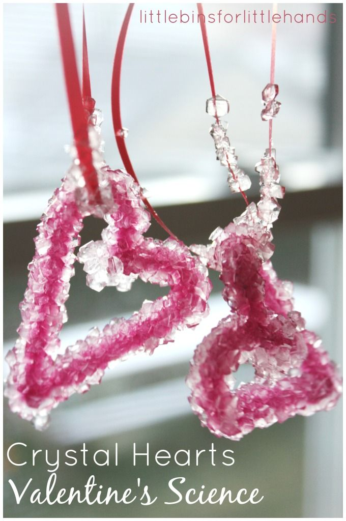 Crystal Science Valentine's Science crystal hearts experiment borax pipe cleaners crystals