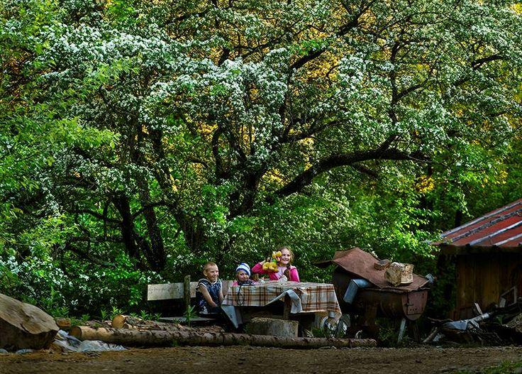 Bucovina, Romania by Sorin Onisor
