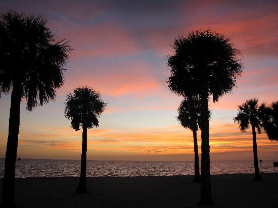 My favorite beach is Pine Island in Brooksville, Fl. Great place to just relax and watch the sunset.