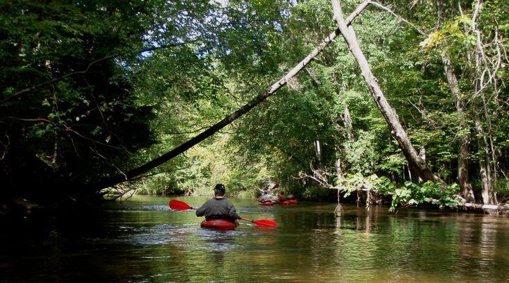 An Insider's Guide to the Daniel Boone National Forest, Kentucky - Kentucky Tourism