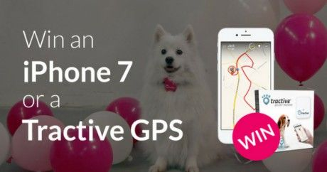 Win an iPhone 7 or a Tractive GPS