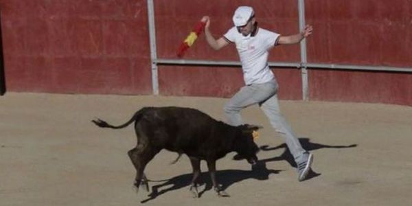 Government of Spain: stop the cruel slaughter of young calves in Spanish fiestas