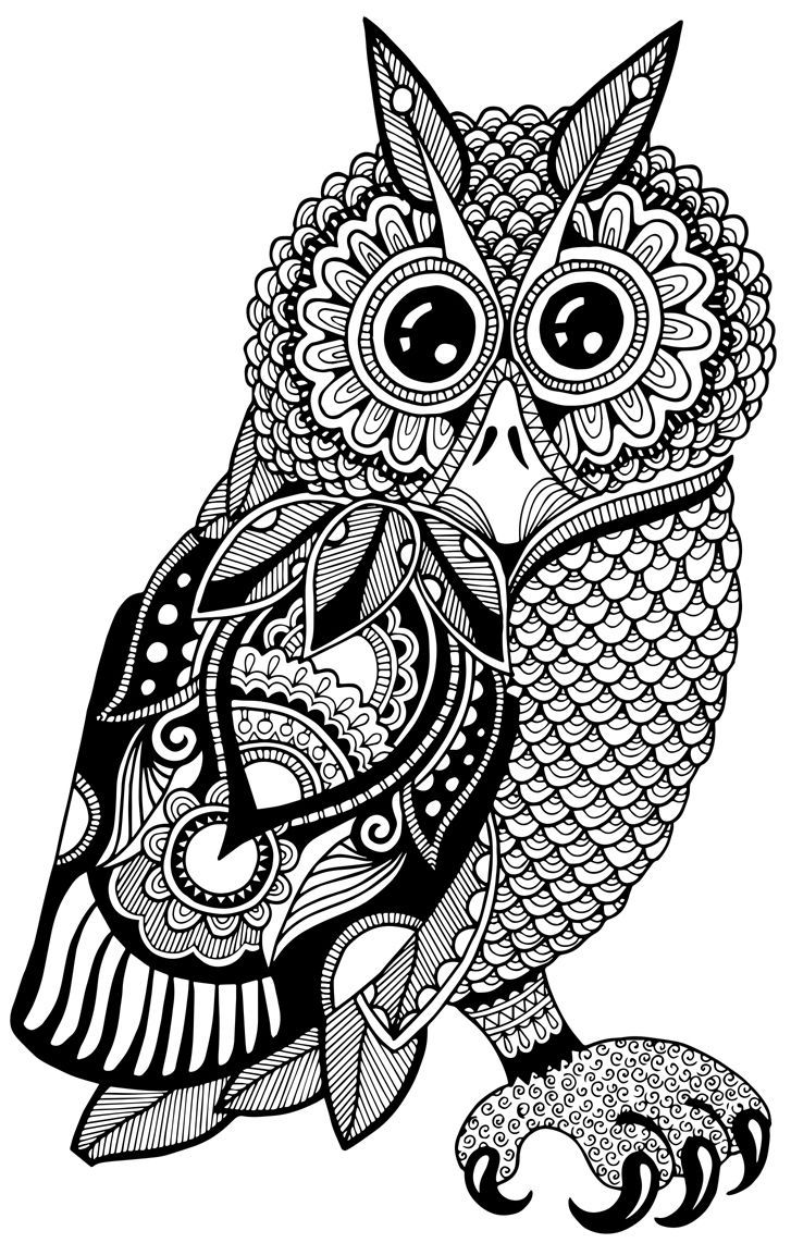 436 best coloring owl images on pinterest owls coloring and