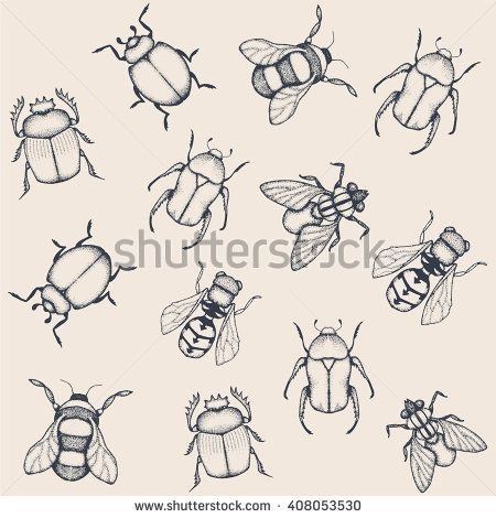 #Vector doodle #insects. Vector #pattern. #pointillism