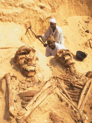 giant skeletons excavation-great link with more pictures. I think these are the Giant race that the Bible told us about. Genisis 6:4