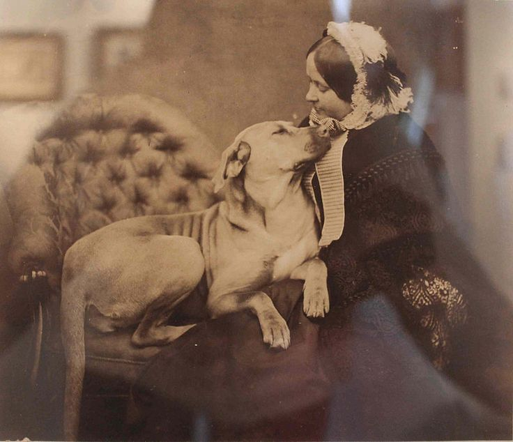 THE QUEEN EMPRESS VICTORIA WITH ONE OF HER PETS