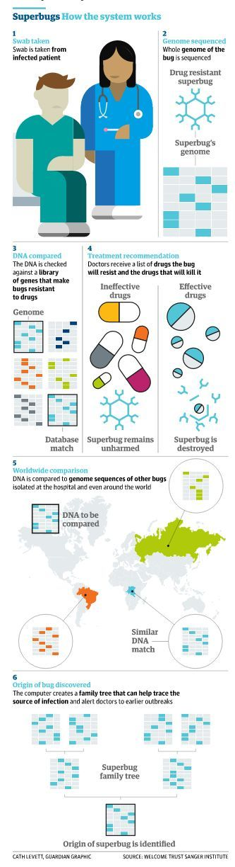 Superbugs meet their match in rapid genome sequencing
