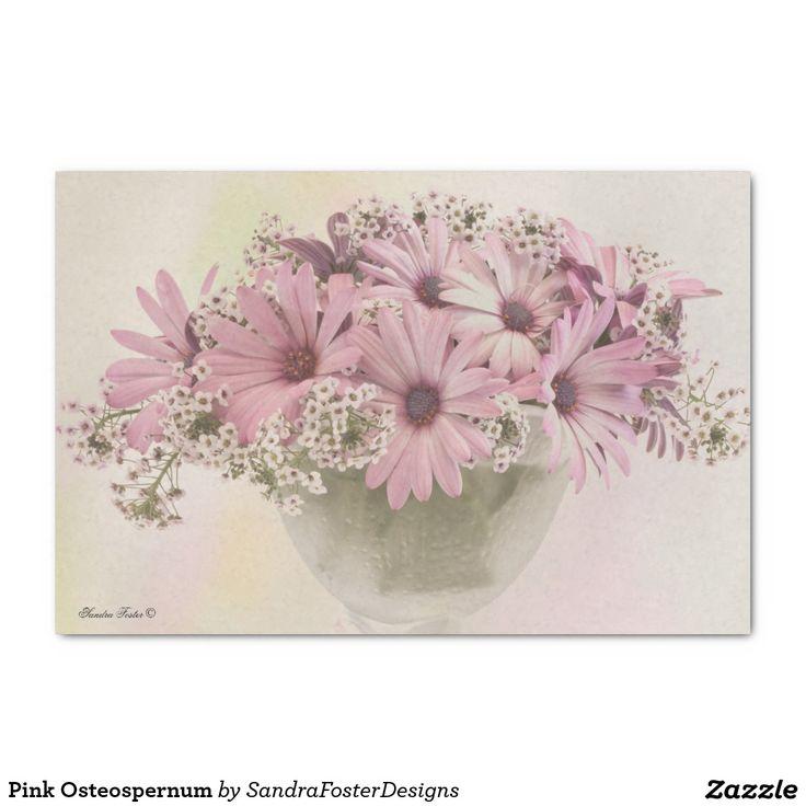 """Pink Osteospernum 10"""" X 15"""" Tissue Paper"""