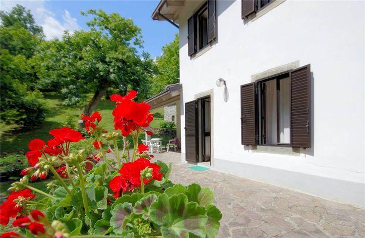 Particolare dei gerani rossi che arredano i giardino di questa graziosa villetta con castagneto Fanano Fellicarolo