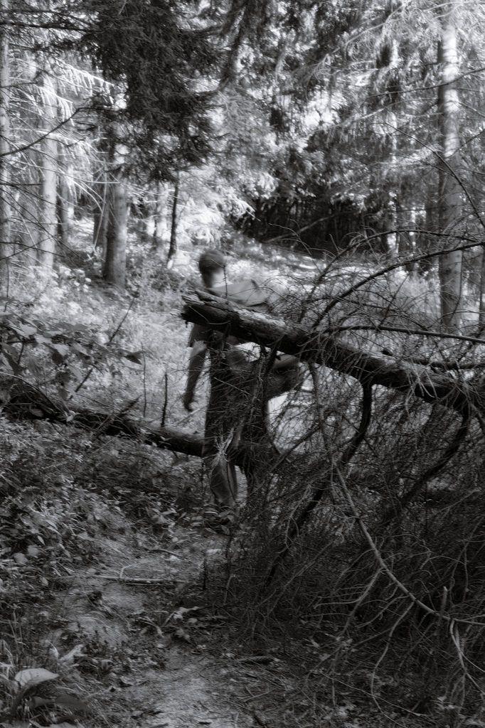 bwstock.photography  //  #backwoodsman