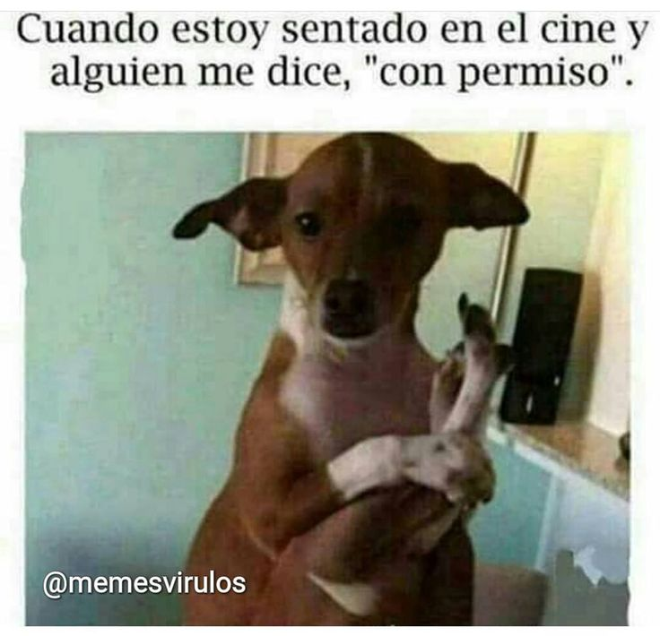 #MemesVirulos • • • • • #chiste #risa #soloenvenezuela #chistes #argentina #humor #humorlatino #moriderisa #colombia #venezuela #meme #risas #peru #memes #ecuador #chistetipico #mexico #panama #venezolanos #chistoso #chile #gracioso #españa #lima #cdmx #caracas #buenosaires #musica #lossimpsons http://quotags.net/ipost/1642253073161943761/?code=BbKdHgRHHrR