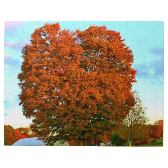 An Oak Tree In The Autumn Photo Puzzle by KJacksonPhotography --  Taken 10.08.2014 An oak tree with orange to reddish brown foilage. At the very bottom, there are some leaves that are still green. A light blue sky with pinkish, yellow and dark bluish clouds in the background. At the UMO Rogers Farm on the Bennoch Road, Stillwater, Maine.PC:229.269