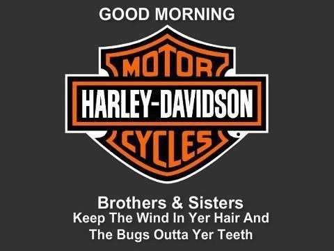 Best Harley Davidson Images On Pinterest Harley Davidson - Stickers for motorcycles harley davidsonsbest harley davidson images on pinterest